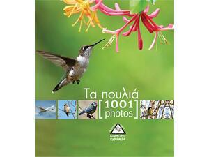 Τα πουλιά - 1001 photos