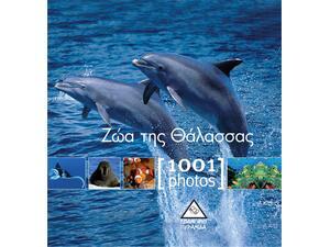Ζώα της θάλασσας - 1001 photos
