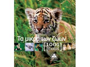 Τα μικρά των ζώων -  1001 photos